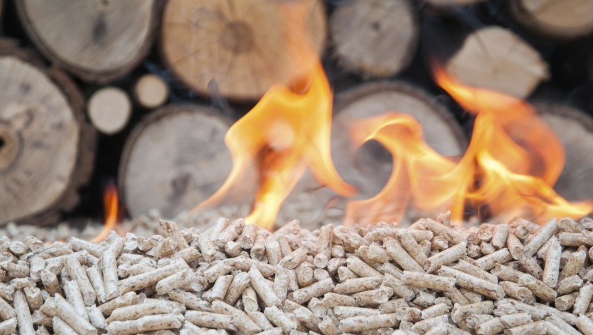 What is biomass energy big green switch